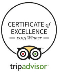 Certificate of excellence 2015